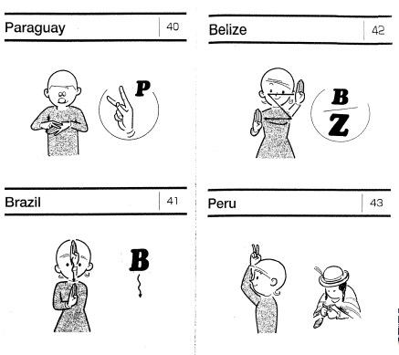 diccionario gestual: