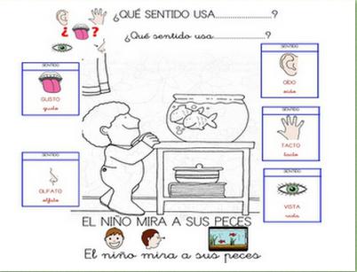Actividades con los sentidos imagui for Mural de los 5 sentidos